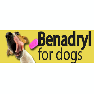 How Much Benadryl Is Safe For A Dog